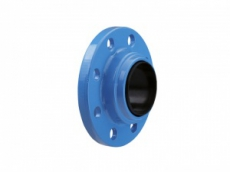 Аксессуары для FEKA CHECK VALVE FLANGED DN 50